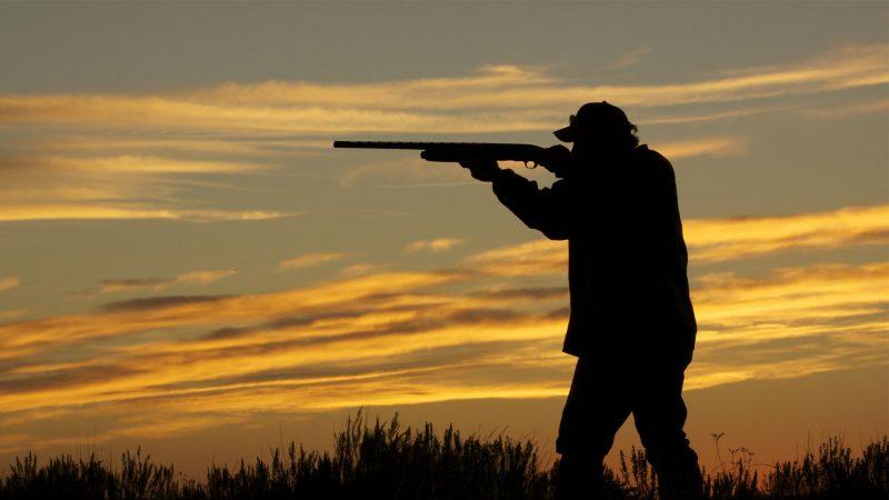 Mandamientos del cazador | Manual de buenas costumbres en la caza | Blog de caza menor | Cuaderno de Caza