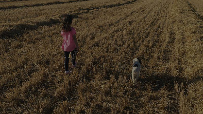 Relevo generacional en la caza | Blog de Caza menor | Cuaderno de Caza