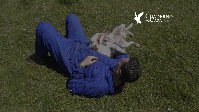 Bienestar del perro de caza | Blog de Caza menor - Cuaderno de Caza