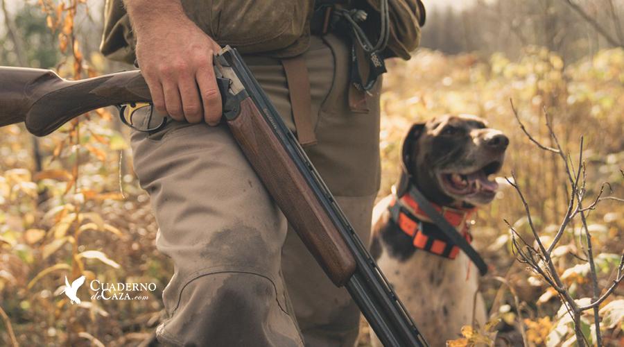 Primer día de caza de becadas | Temporada de sorda 2018 | Cuaderno de Caza