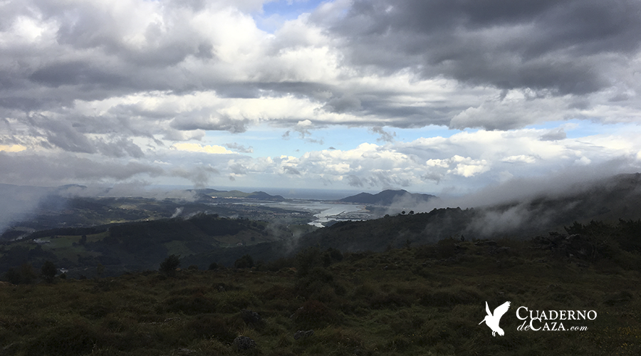 Caza de la becada | Cazando becadas en Cantabria | Veda general 2018 | Cuaderno de Caza