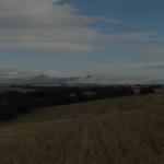 Coto de codorniz en Palencia Norte | Coto de caza Báscones de Ojeda | Cuaderno de Caza