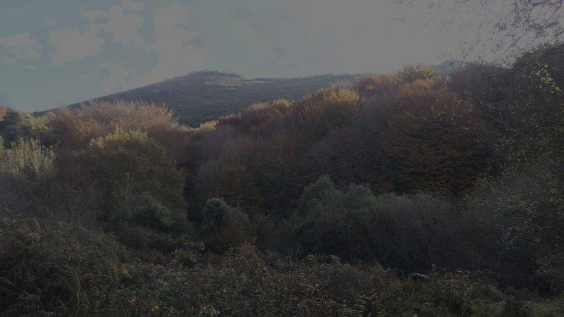 El campo no es de todos | Cuaderno de Caza