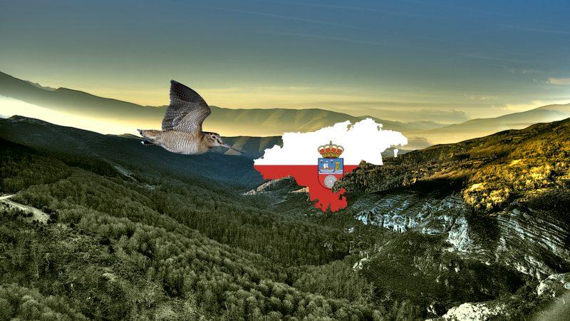 Orden de vedas Cantabria 2019-2020 | Plan Anual de Caza Reserva Regional de Caza Saja 2019 - 2020 | Fechas temporada de sorda en Cantabria | Apertura temporada de becadas Cantabria | Fechas media veda Cantabria | Cupo de sordas en Cantabria | Fechas perreo de sorda en Cantabria | Cuaderno de Caza