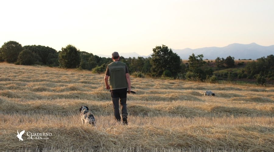 El chaleco del cazador | Prendas favoritas en la caza | Cuaderno de Caza