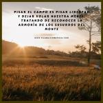 Pisar el campo es pisar libertad | Frases de cazadores | Cuaderno de Caza