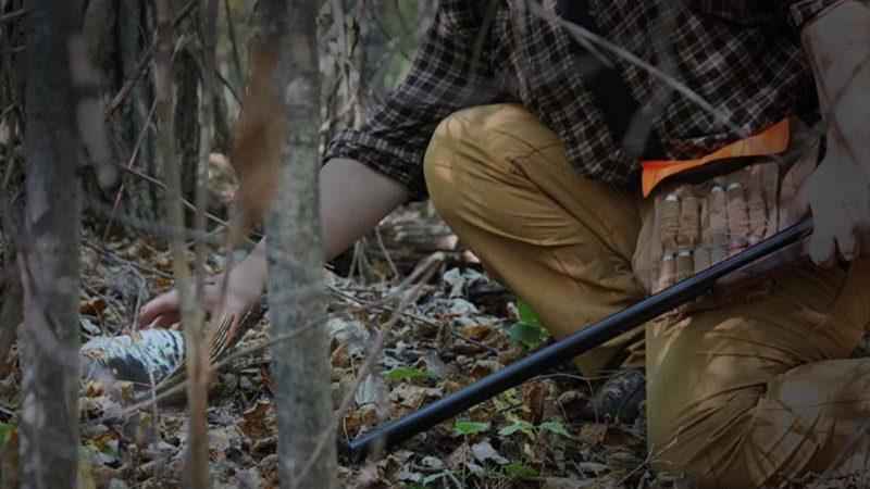 Sorda | Claves para la caza de la becada | Cuaderno de Caza