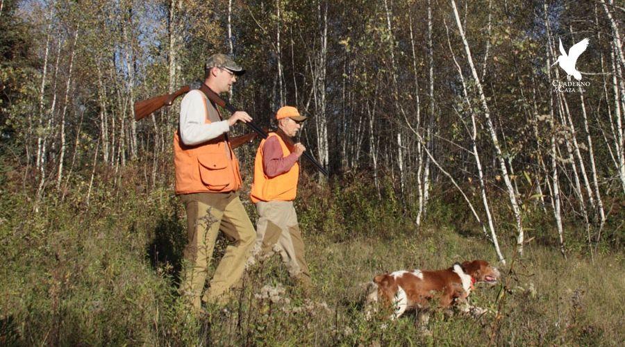 Sorda   Claves para la caza de la becada   Cuaderno de Caza