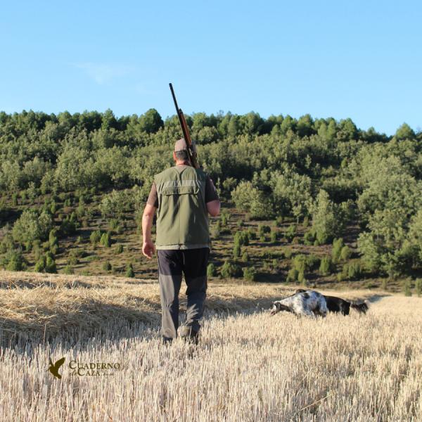 Cuaderno de Caza | Fotos Setter Inglés cazando