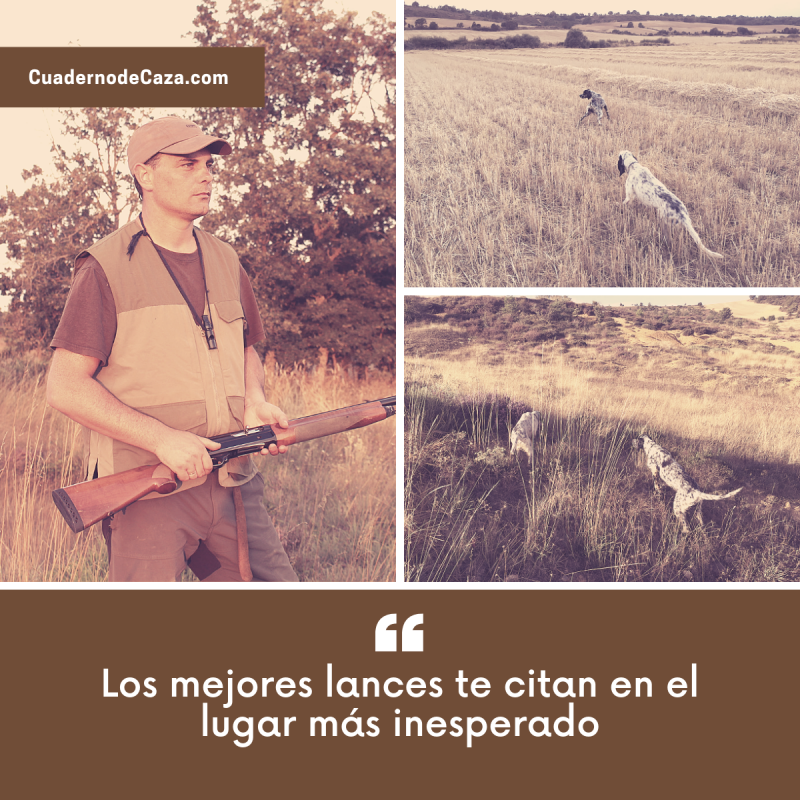 Los mejores lances te citan... | Frases de caza | Cuaderno de Caza