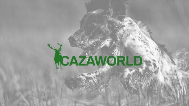 Segundo artículo publicado en Cazaworld | Cuaderno de Caza