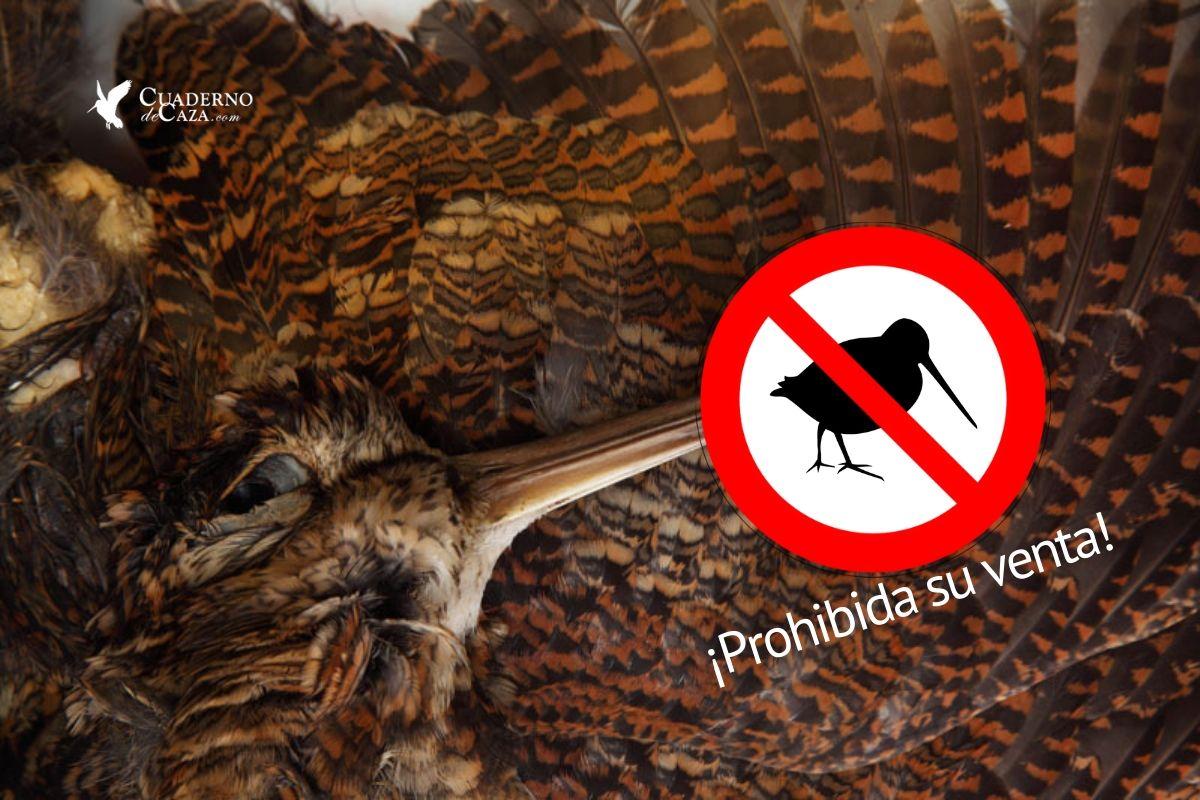 Comercialización de la becada | Prohibición venta | Cuaderno de Caza