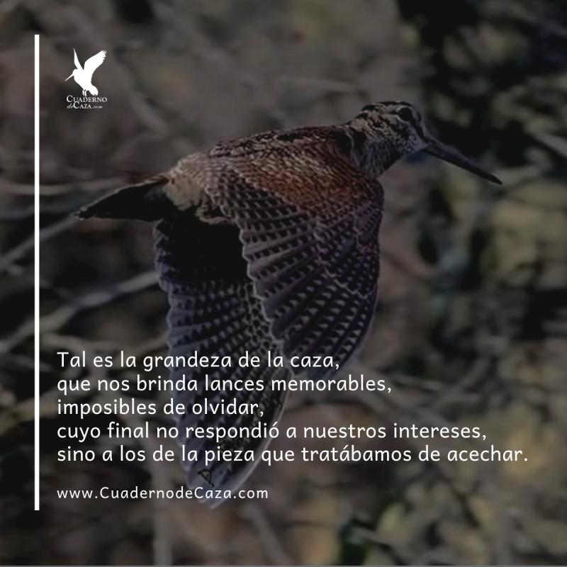 Tal es la grandeza de la caza | Frases sobre la caza | Cuaderno de Caza