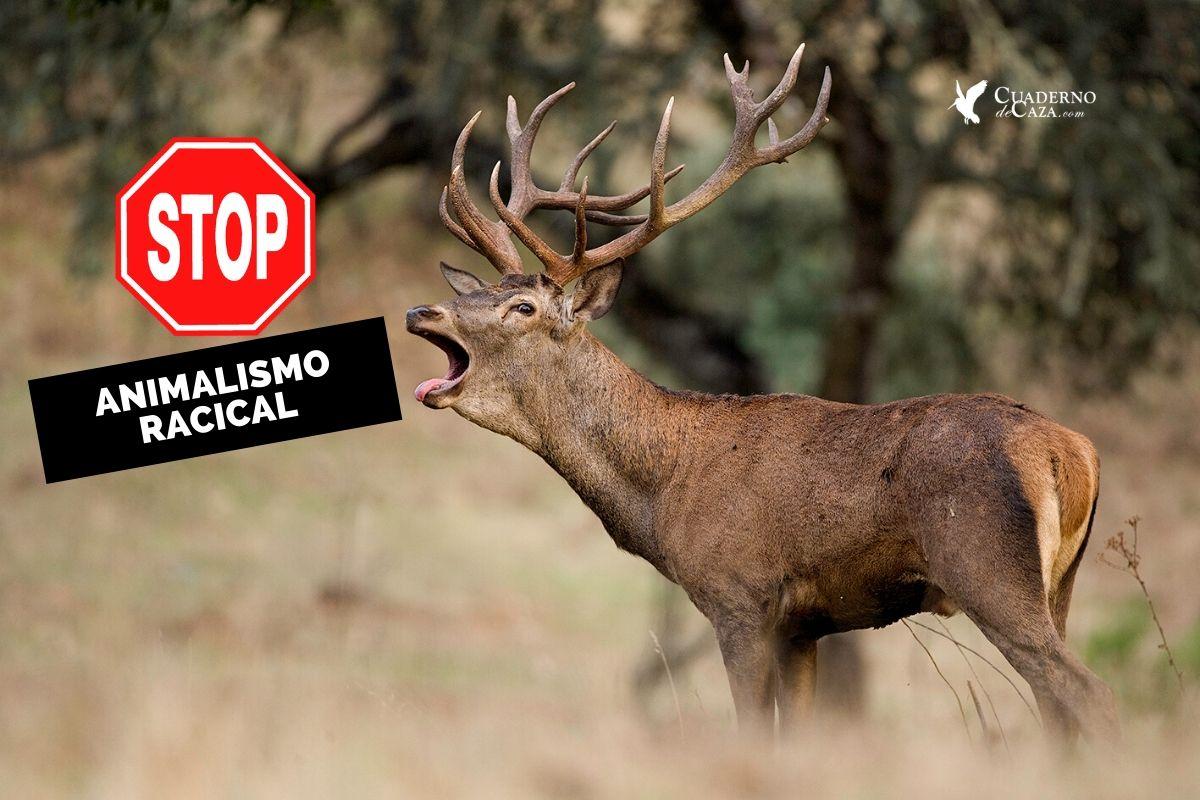 Animalistas, Protectoras y Santuarios de animales   Cuaderno de Caza