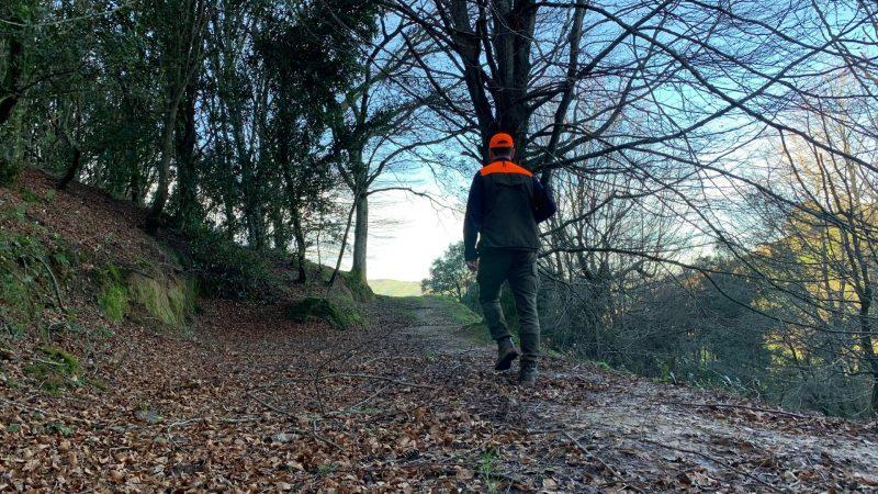 Becada fantasma | Jornadas caza de becadas 2019 | Cuaderno de Caza