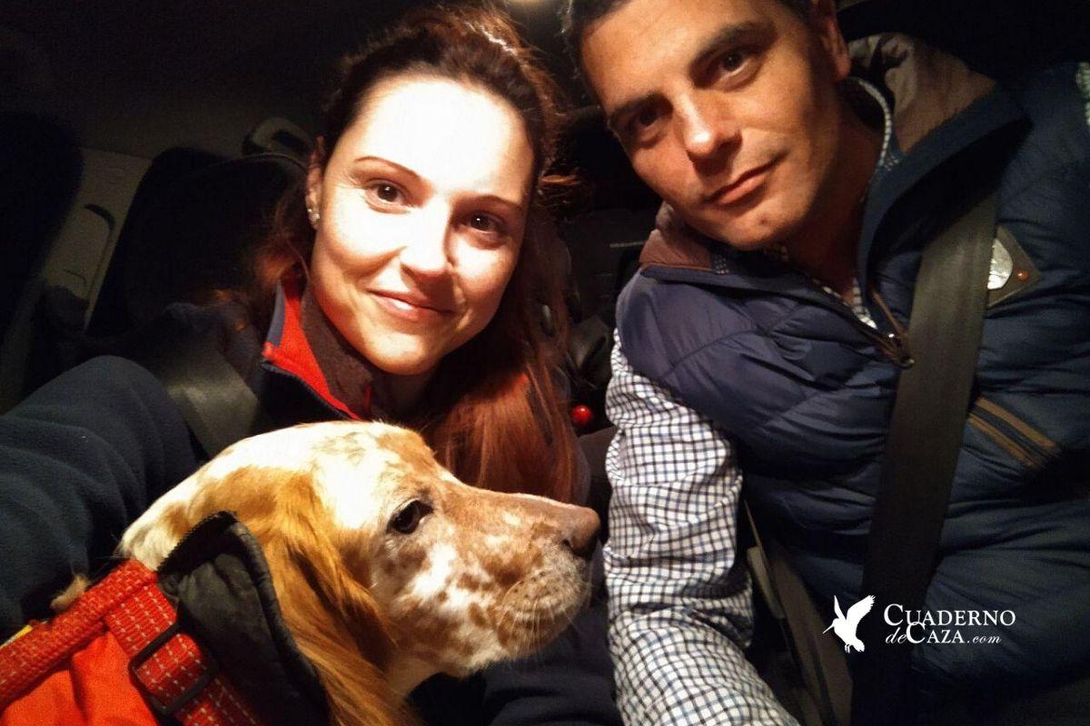 Protectora de animales | Cachorro setter perdido | Cuaderno de Caza