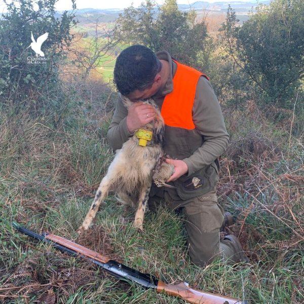 Cuaderno de Caza | Fotos de caza de becadas