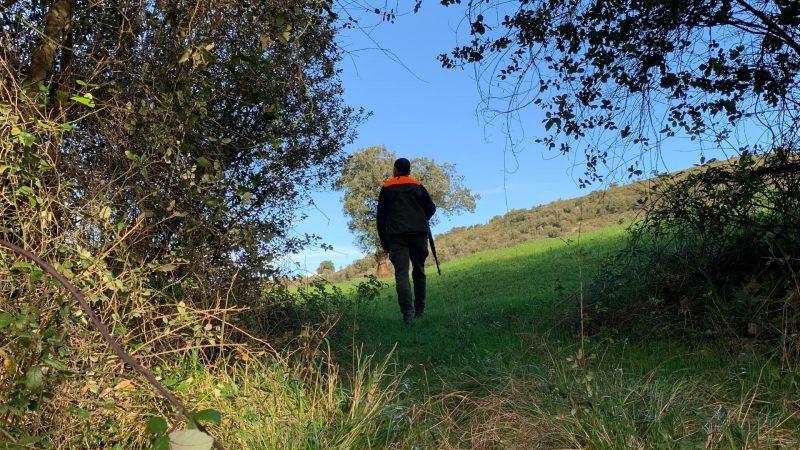 Final de la temporada de caza | Cuaderno de Caza