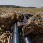 Pensando en caza cuando no cazamos | Cuaderno de Caza
