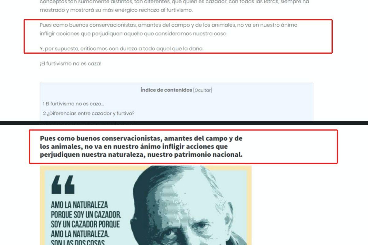 Rocío de Andrés   Cuaderno de Caza