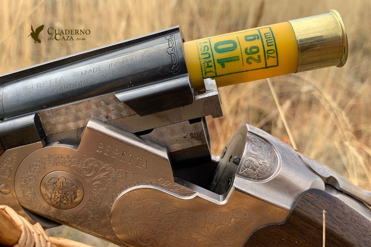 Codornices en Burgos con calibre 20 | Cuaderno de Caza