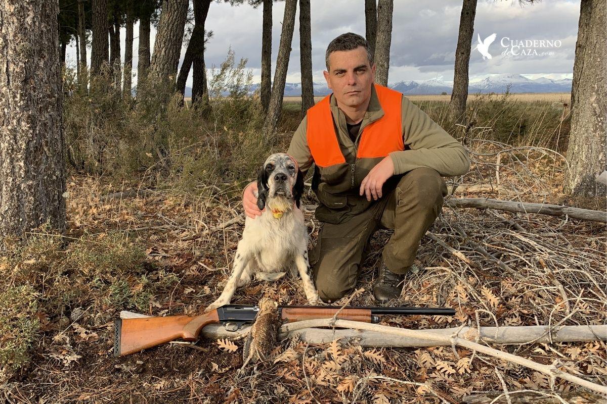 Artículos caza de becadas en España | Cuaderno de Caza