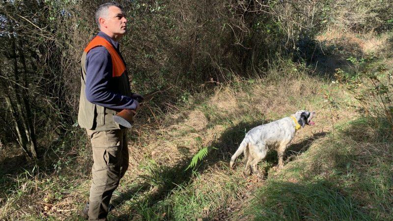 Blogs caza menor en España | Cuaderno de Caza