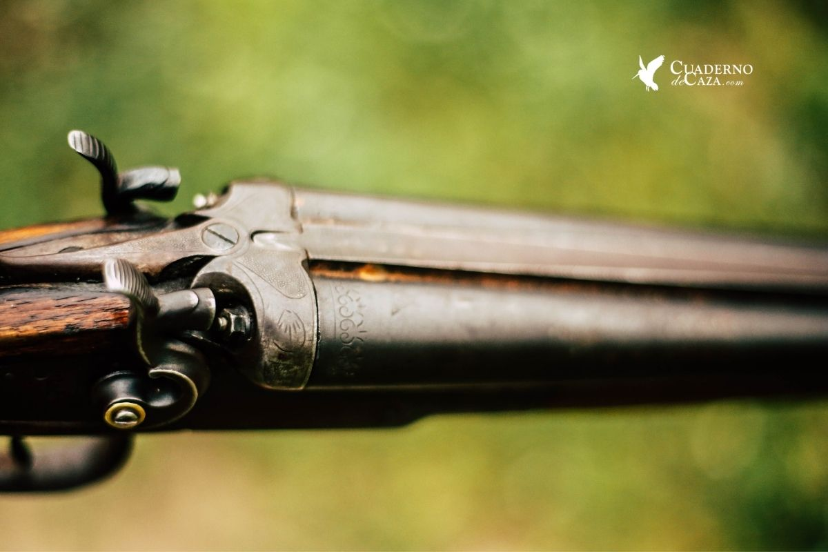 Imagen de la caza | Reputación social de la caza | Cuaderno de Caza