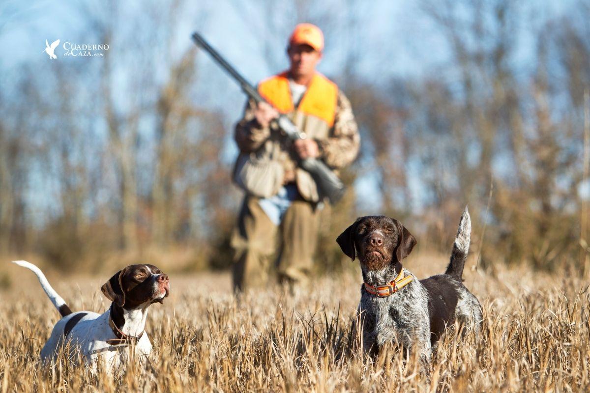 Restricciones movilidad para cazar | Cuaderno de Caza