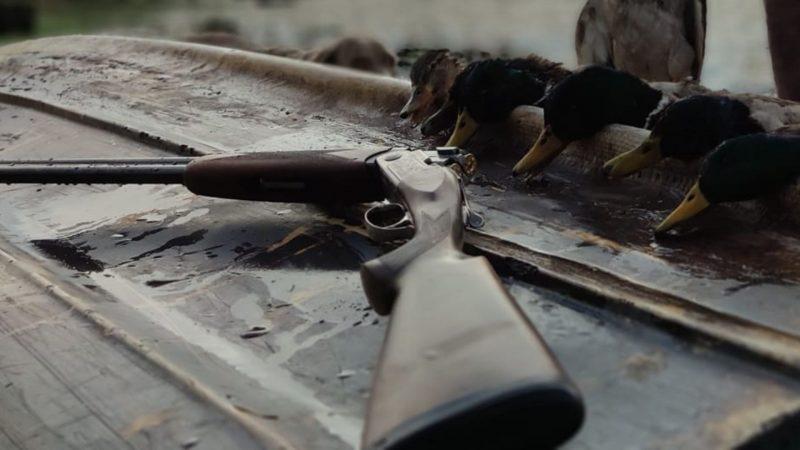 Calibre 20 | Escopetas calibre 20 | Cuaderno de Caza