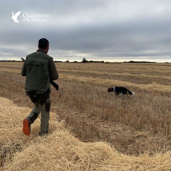 Fotos de caza | Cuaderno de Caza
